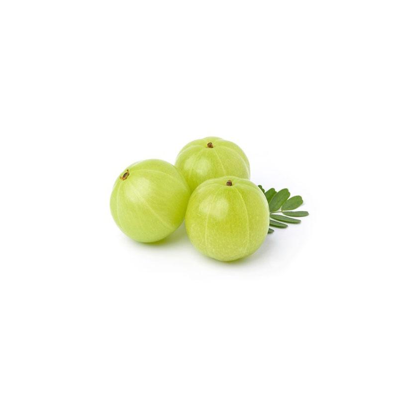 Fresh    Stachelbeere (Amla)